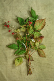 Raspberry.Dried herbs. Herbal medicine, phytotherapy medicinal h