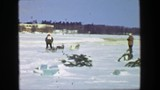 1956: Winter sled dog racing iditarod snow covered sporting event.