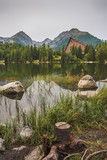 Strbske Pleso Mountain Lake in High Tatras Mountains, Slovakia with Rocks, Stump and Grass in Foreground