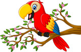 Cute parrot on the branch