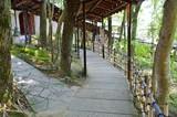 日本庭園の石畳の道