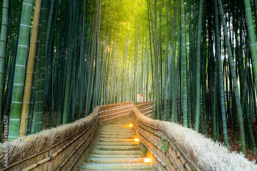 Plexiglas Bamboe Arashiyama Bamboo Forest