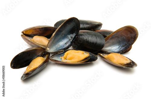 Fototapeta mussels isolated