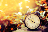 Fototapety Old alarm clock between yellow leaves in the nature and summer season sun light