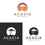 Acacia logo. Africa tree logotype.