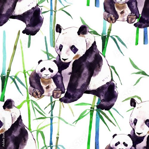 Panda watercolor. Panda bear and baby bear. Panda Bear watercolor illustration isolated on white background - 118681617