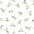 Vector seamless pattern with purple and white flower buds on a white background.