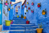 Blue staircase and wall decorated with colourful flowerpots, Chefchaouen medina in Morocco. - 118692603