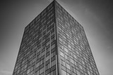 Office complex of high-rise buildings. Black and white.