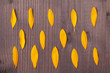 sunflower petals on the wooden background. pattern