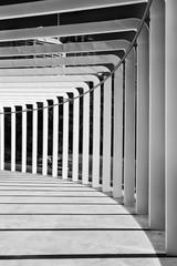 RBG Paviliion Geometry Vert © Taras Vyshnya