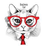 Obraz Portret kota w okularach i w krawacie