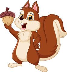 Cute squirrel cartoon holding acorn