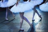 Ballet swan lake.  statement. Ballerinas in the movement. - 118803659