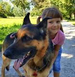 Bambina sorridente con cane pastore tedesco
