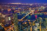 New York City Manhattan downtown skyline - 118809678
