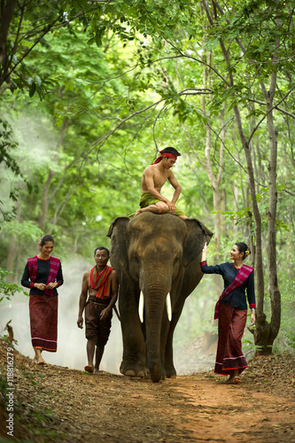 Poster Kui peoples in thai with elephant