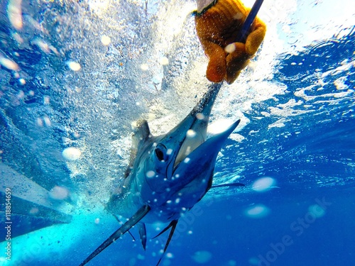 Blue Marlin Release Poster