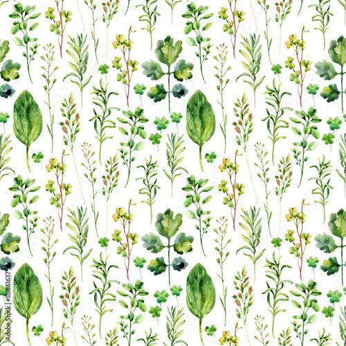 Fototapeta Watercolor meadow weeds and herbs seamless pattern