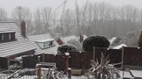 Snow falls on rear gardens and the roof tops of English, suburban houses.