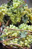 cesto di uva bianca
