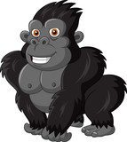 Cute gorilla isolated on white background