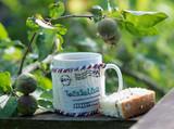 Чай с бисквитом на свежем воздухе