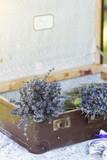 lavender in suitcase