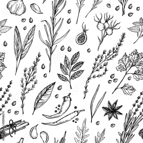 Hand drawn vintage background - herbs and spices. Vector seamless pattern