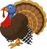 Cartoon turkey character