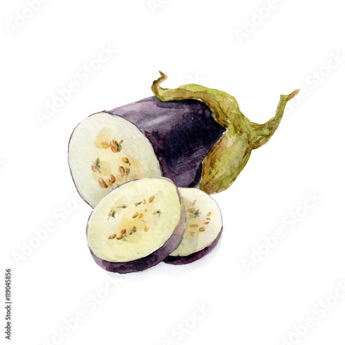 Valokuva Watercolor hand drawn eggplant