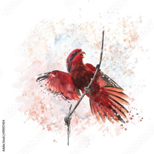 niebiesko-paskowana-akwarela-lory-parrot