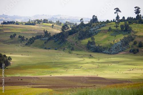 Fotobehang Farm in the mountains of Ethiopia