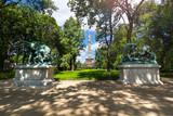 Tiergarten in Berlin mit Blick auf die Siegessäule - 119077485