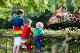 Kids feeding giraffe at the zoo - 119085455