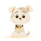 Cute little funny dog puppy