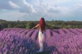 Fototapety Girl in lavender
