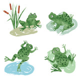 Set of cute watercolor frogs isolated on white. Vector illustration.