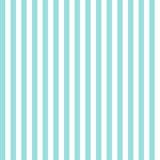 Fototapety Stripe pattern seamless green aqua and white colors. Fashion design pattern seamless . Geometric vertical stripe abstract background vector.