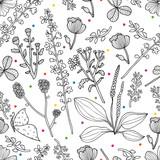 Flowers line seamless pattern. Vector design.