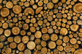 Background of dry chopped firewood logs stacked up on top - 119324241