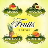 Fruits. Vector. Mango, avocado, pineapple, grapefruit
