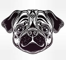 Normalny styl Ilustracja Pug pies twarzy.