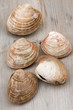 Clams on weathered wood table. Cherry Stone, harvested in Maritime Provinces, Canada