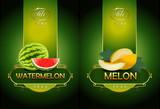Watermelon, melon. Vector