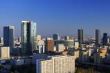 Panorama nowoczesnej Warszawy - 119445492