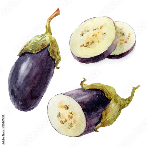 Poster Watercolor hand drawn eggplant
