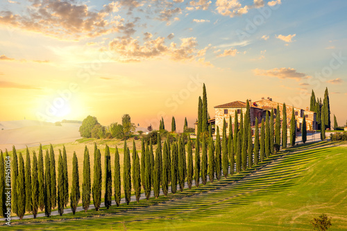 Fototapety, obrazy : Tuscany at sundown - countryside road with trees and house