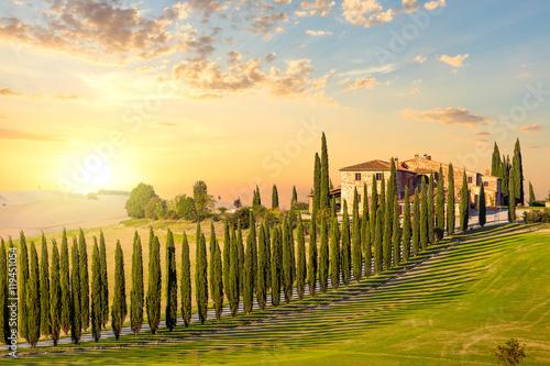 Zdjęcia na płótnie, fototapety na wymiar, obrazy na ścianę : Tuscany at sundown - countryside road with trees and house