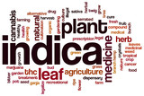 Indica word cloud
